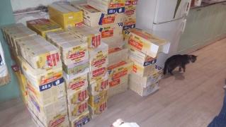 Annas Spendenfahrt nach Ungarn_12