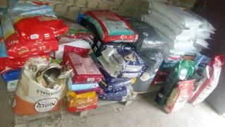 Annas Spendenfahrt nach Ungarn_6