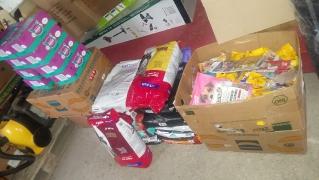Annas Spendenfahrt nach Ungarn_7